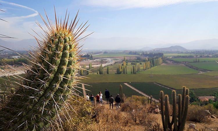 valle-del-aconcagua-006