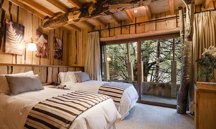 Habitación standard de Hotel Reino Fungi, Huilo-Huilo.